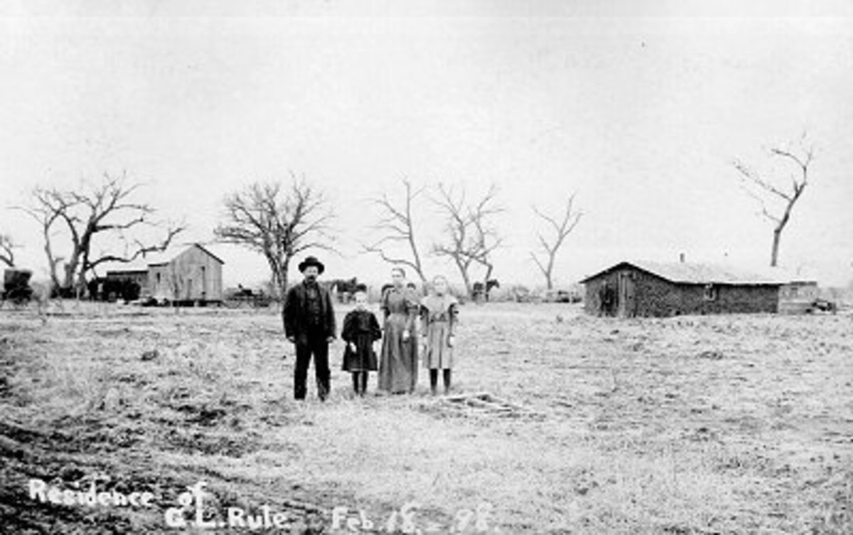 A typical Homestead. 1893
