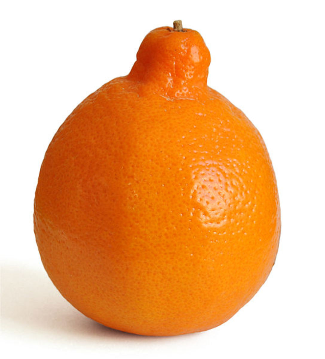 This minneola was photographed by Amada44 on January 15, 2011.