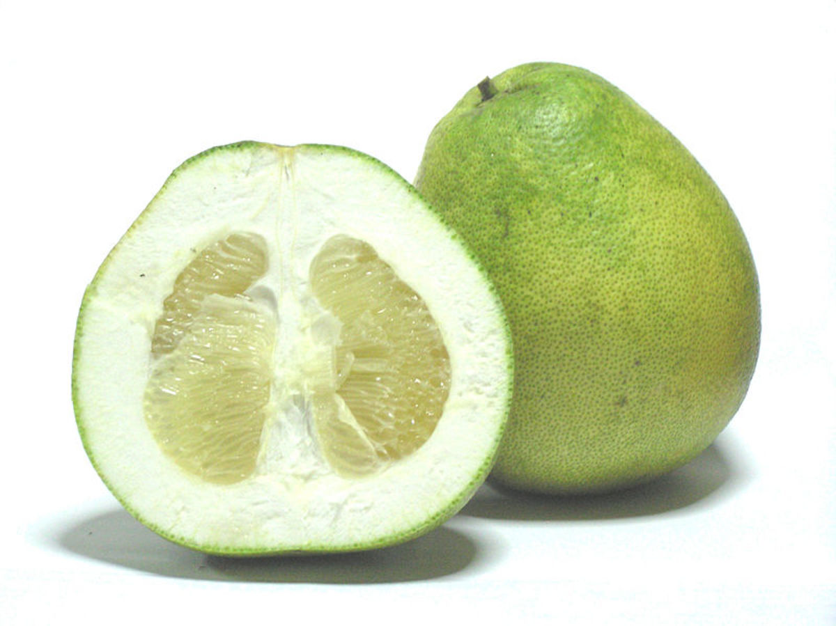 Ananda photographed this pomelo in Thailand on December 12, 2005.