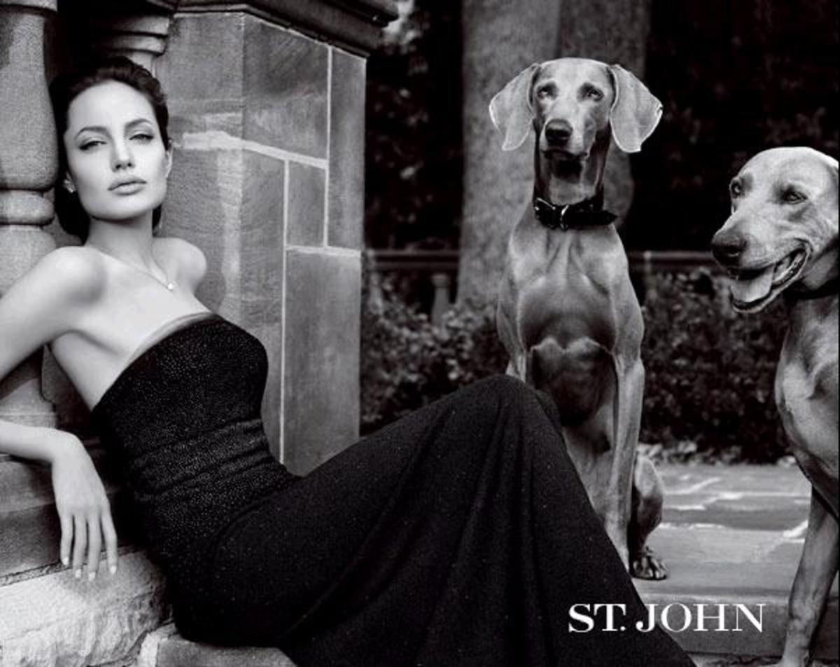 St John advertisement with Angelina Jolie and two dogs