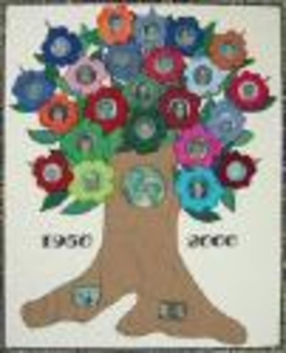 A family tree on the wall and it is always a talking point