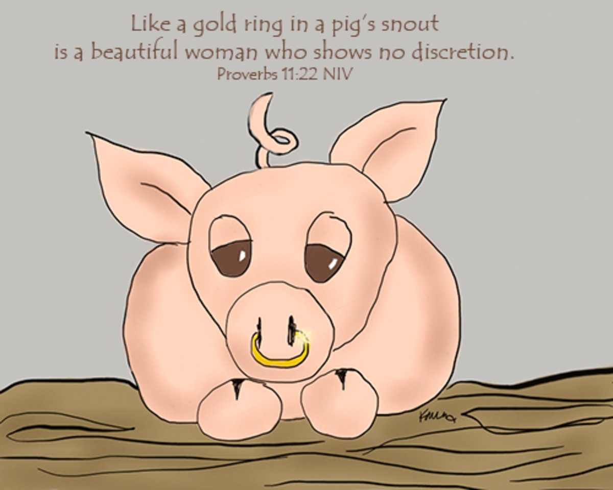 Proverbs 11:22