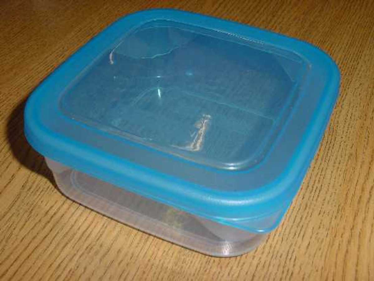Transfer to Tupperware Container after you net one