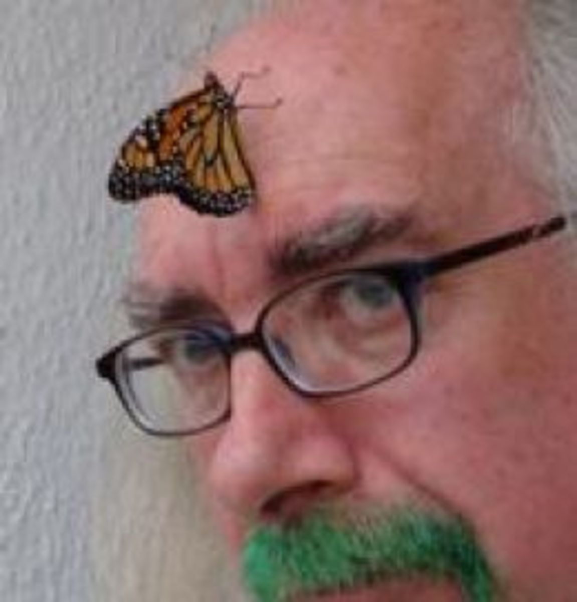 Bard of Ely with a Monarch on his head