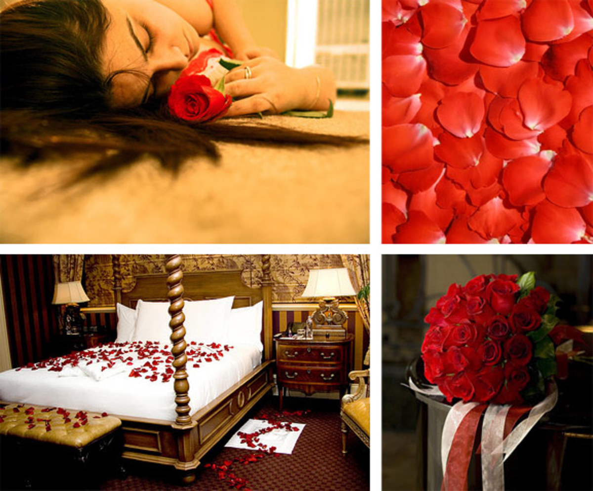 Feel the touch of the rose petals