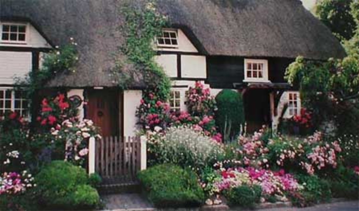 2576890 f520 - THE MOST BEAUTIFUL ENGLISH COTTAGES PICTURES STUNNING ENGLISH COUNTRY COTTAGES AND HOMES IMAGES
