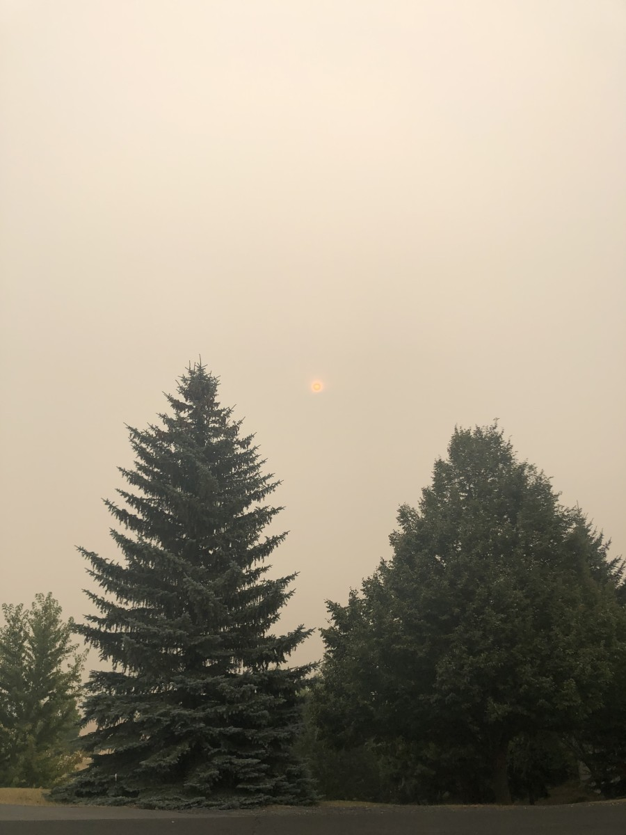 The sun managed to peek its way through the smoke-filled sky today for the first time in recent memory...