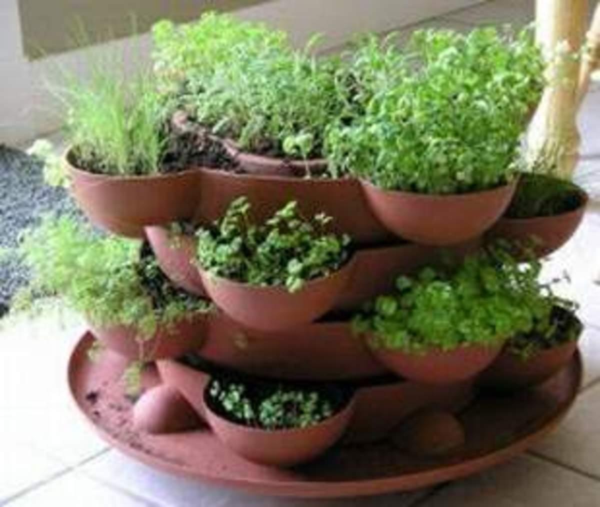 tips-for-planting-a-vegetable-garden
