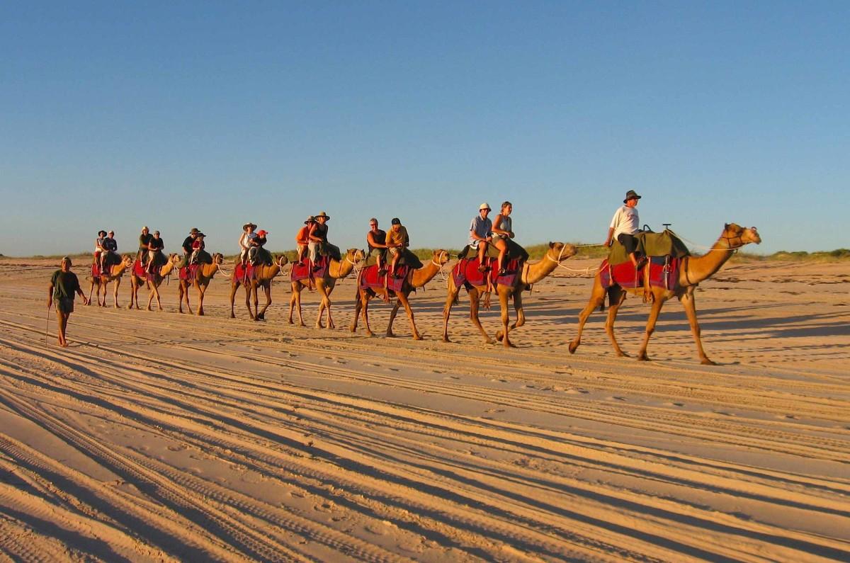 Abdul (lead camel) and his Camel jockeys