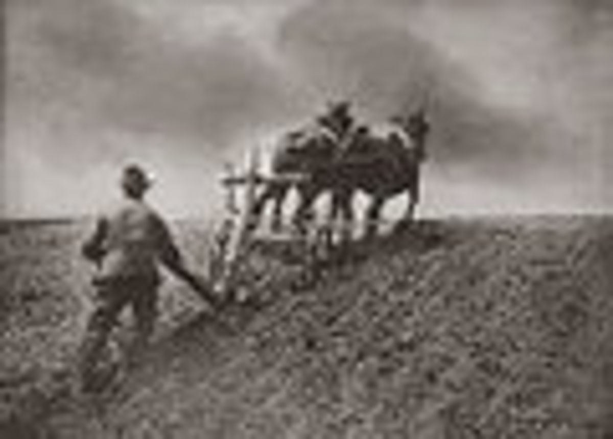 Myth of the Yeoman Farmer as Thomas Jefferson's  American View