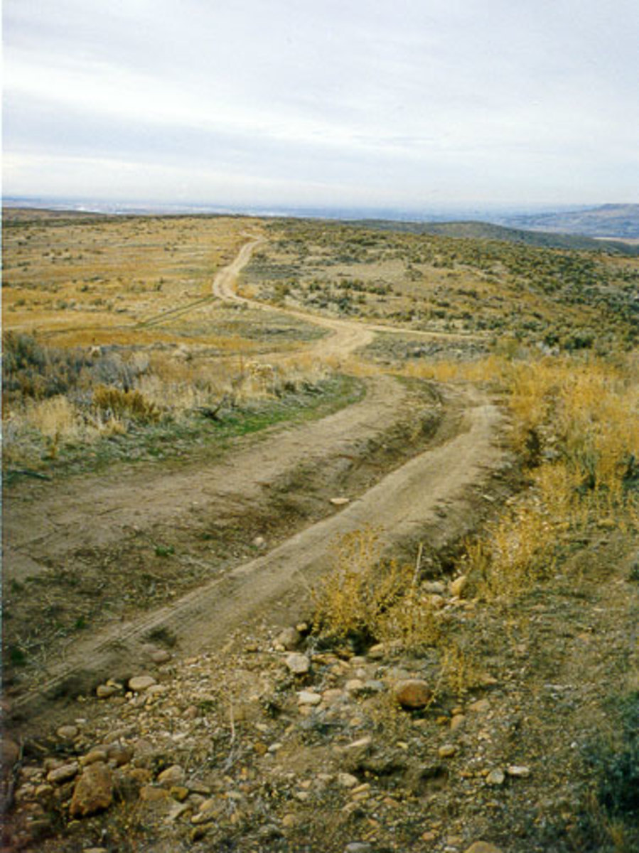 Wagon Wheel ruts are still visible in some areas of the Oregon Trail as seen here.