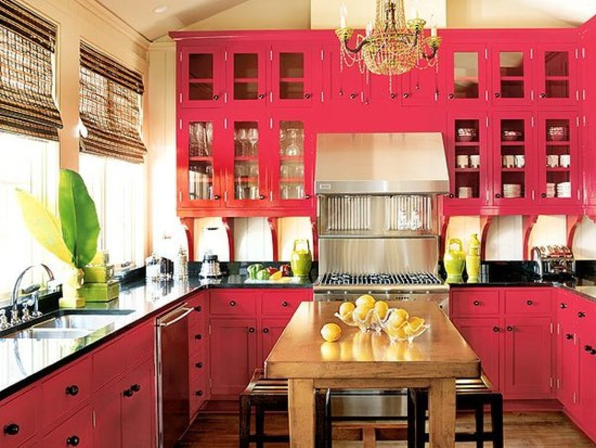Hot pink transitional kitchen