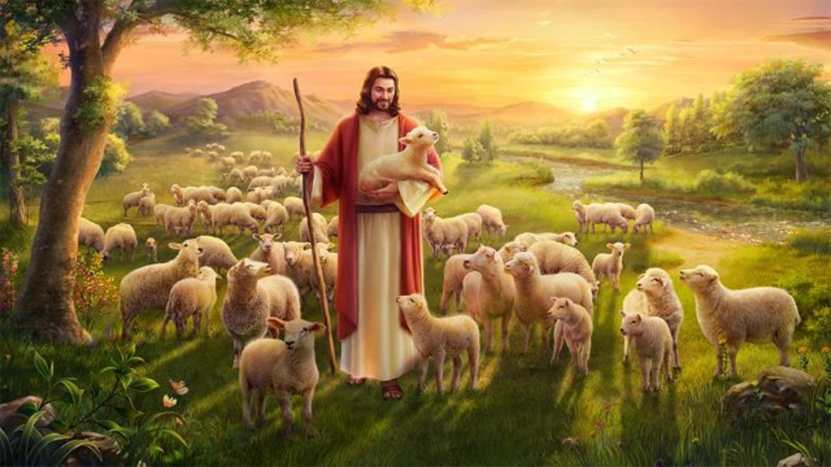 The shepherd leaves the 99 sheep and goes after the one lost sheep.