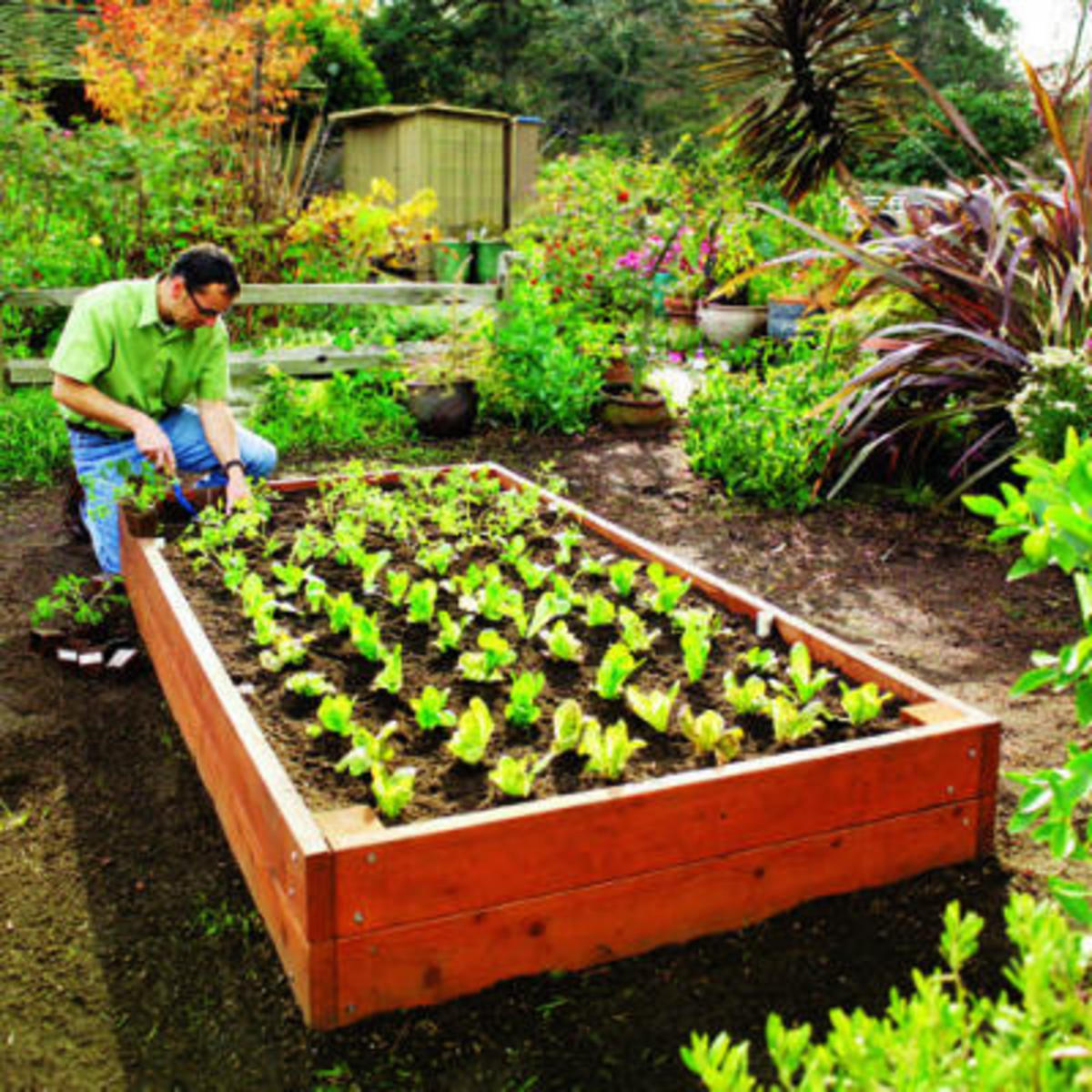 Raised bed gardening allows for easy access to what you grow and it helps in heat retention and weed control. Use some mulching and you have a real winning combo.