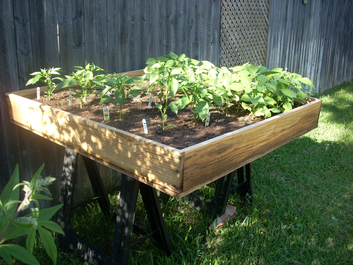 Mel's Mix:  Best Ingredients for Square Foot Gardening Soil Mix