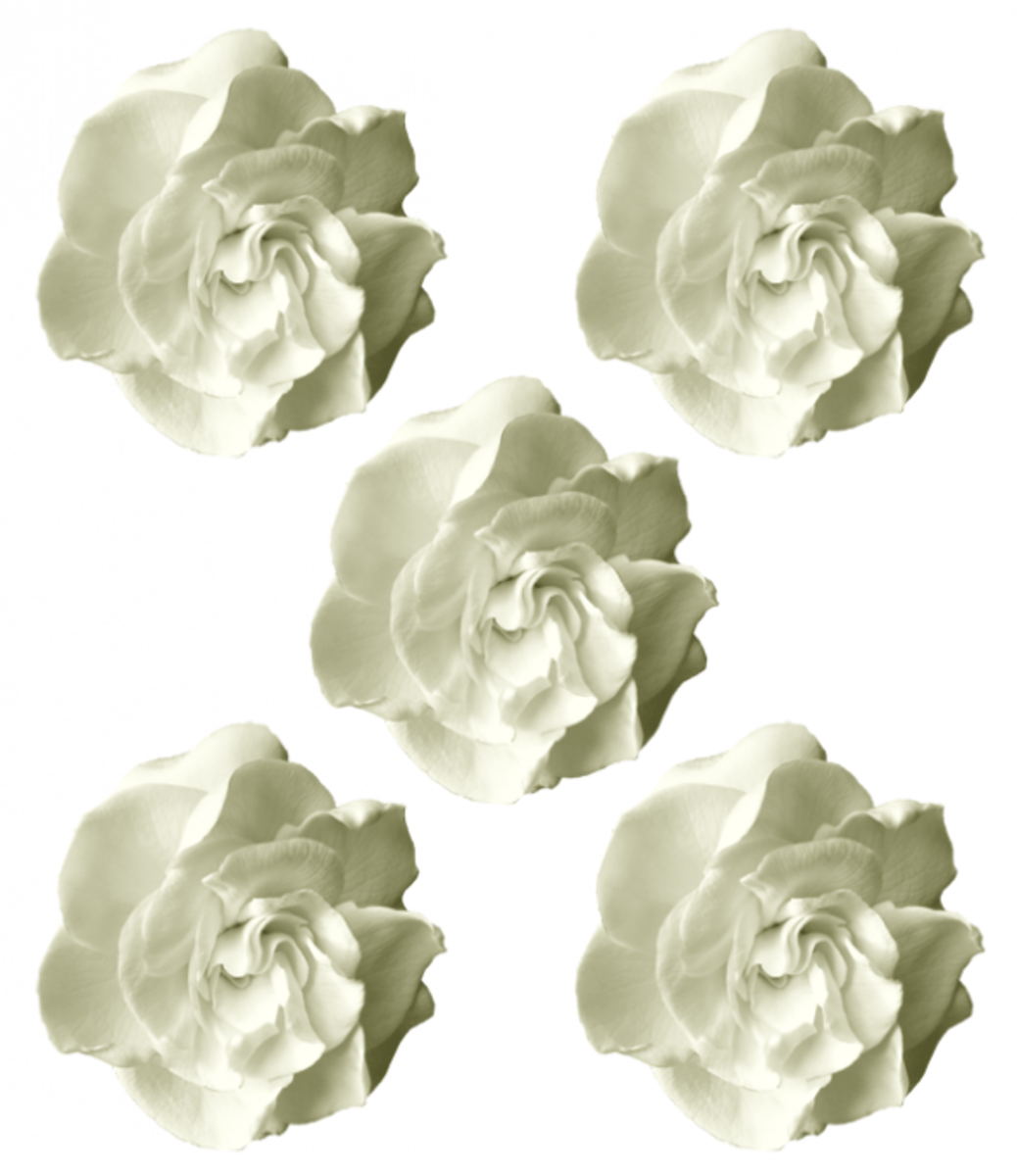 Printable White Flowers Mother's Day Craft