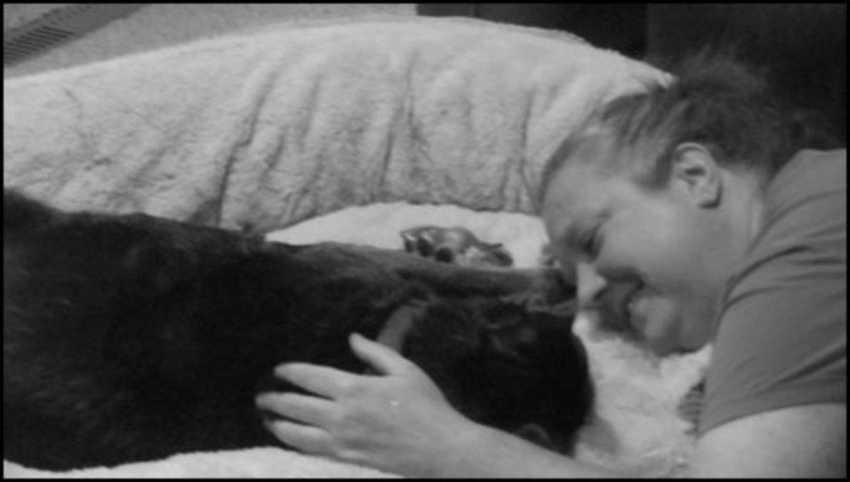 my-dogs-sixth-sense-helped-me