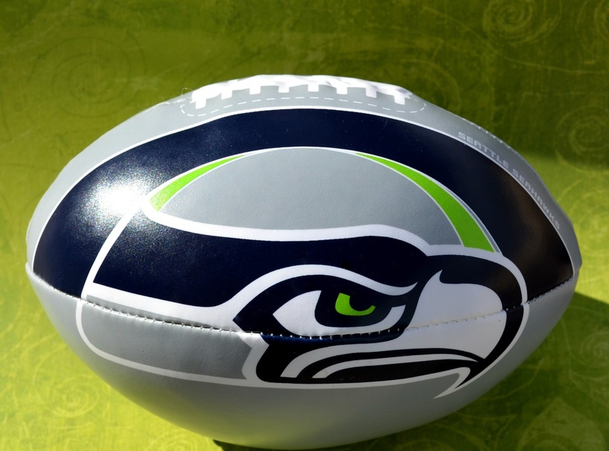 NFL Seattle Seahawks logo, using the colors and sea hawk image of the Pacific Northwest.