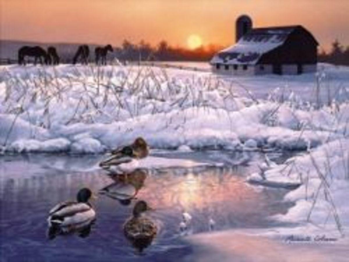 Winter Morning Farm