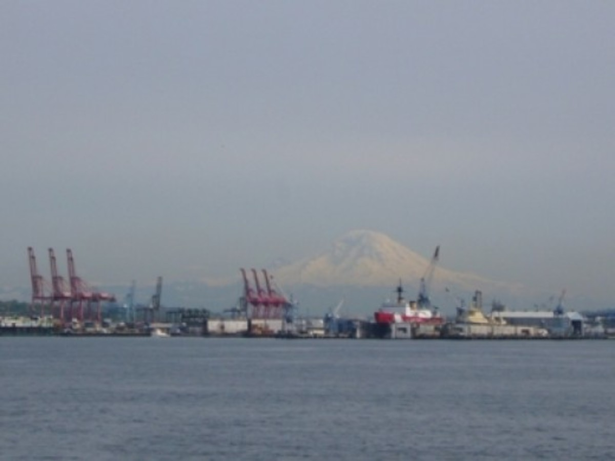 A View of Mount Rainier