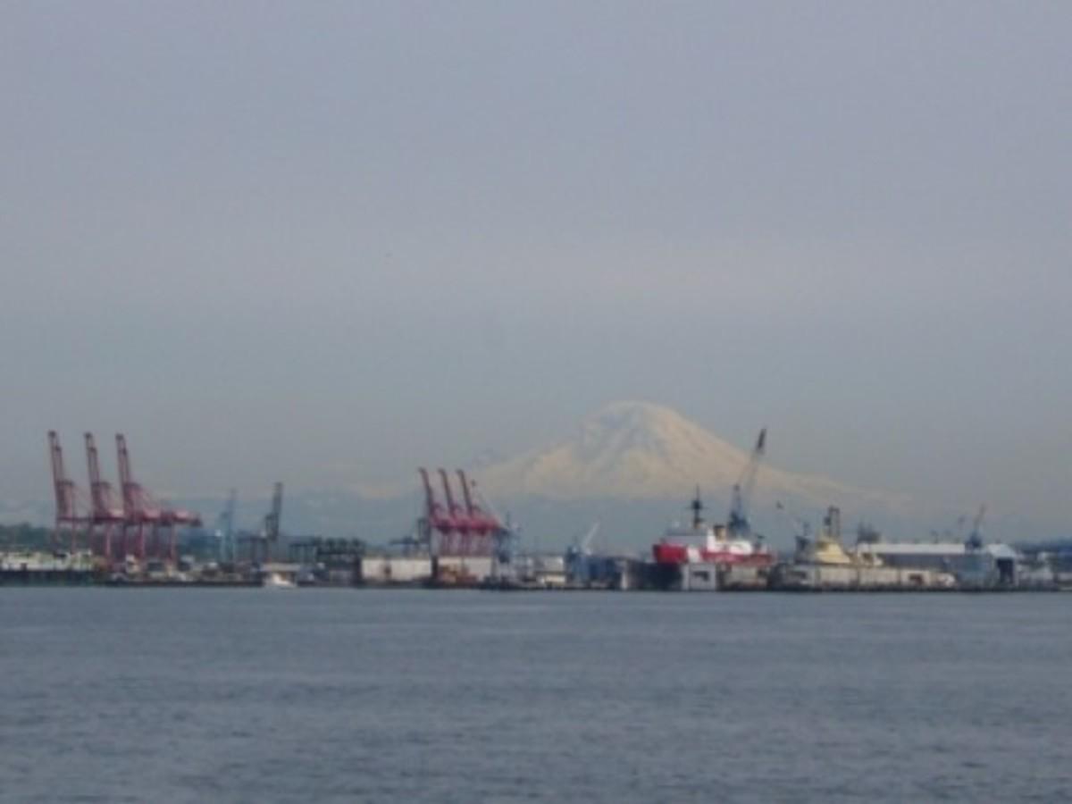 A View of Mount Rainier