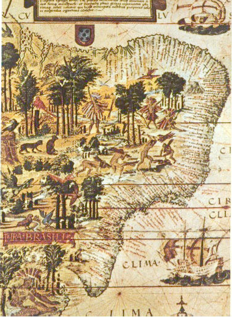 Detail of   Terra Brasilis map, from 1519, with Brazilwood represented along the coast of the Atlantic Forest