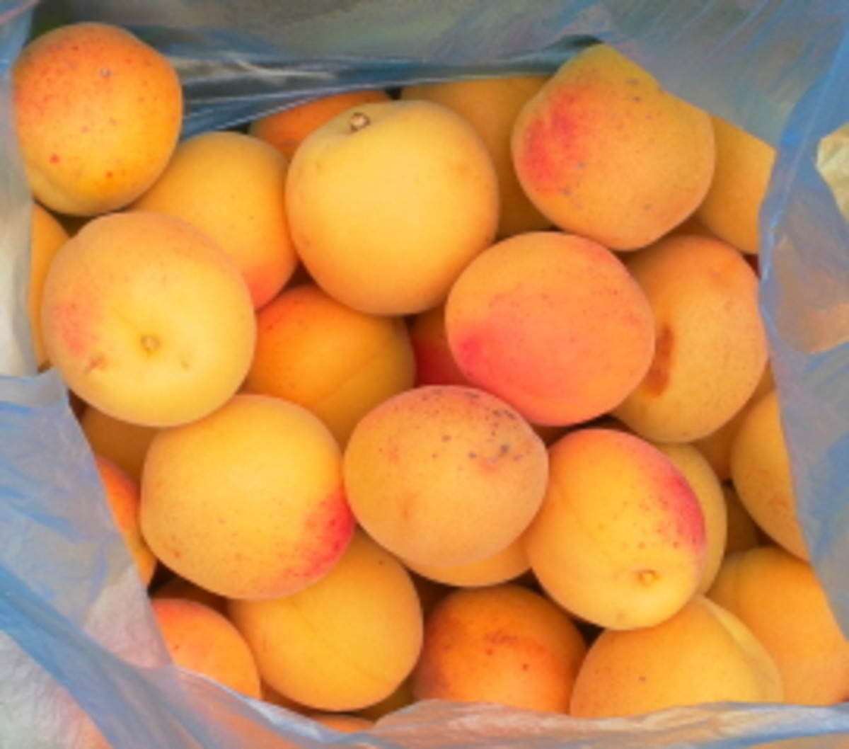 Great Recipes with Fresh Apricots - How to Make Jam, Chutney and Sun-dried Fruits