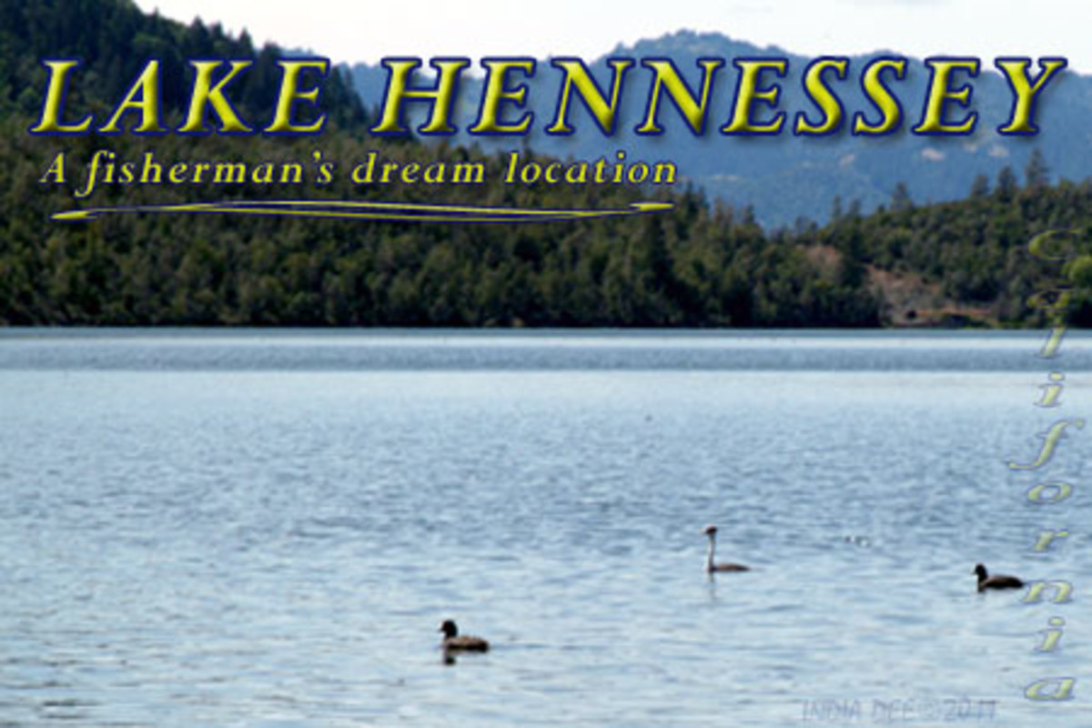 Lake Hennessey is a true fishermen's dream vacation, with its calm water and beautiful secluded location.