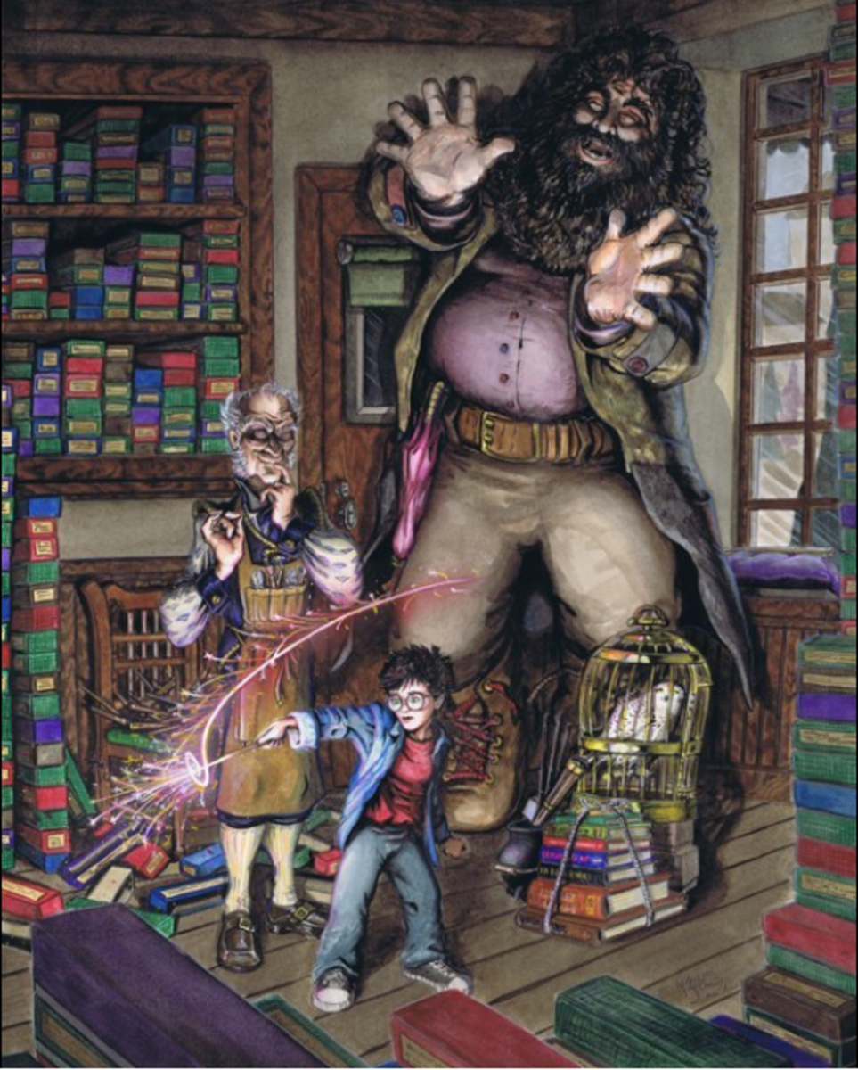 This is a wonderful picture of Harry learning magic - Hagrid's fright is very evident.