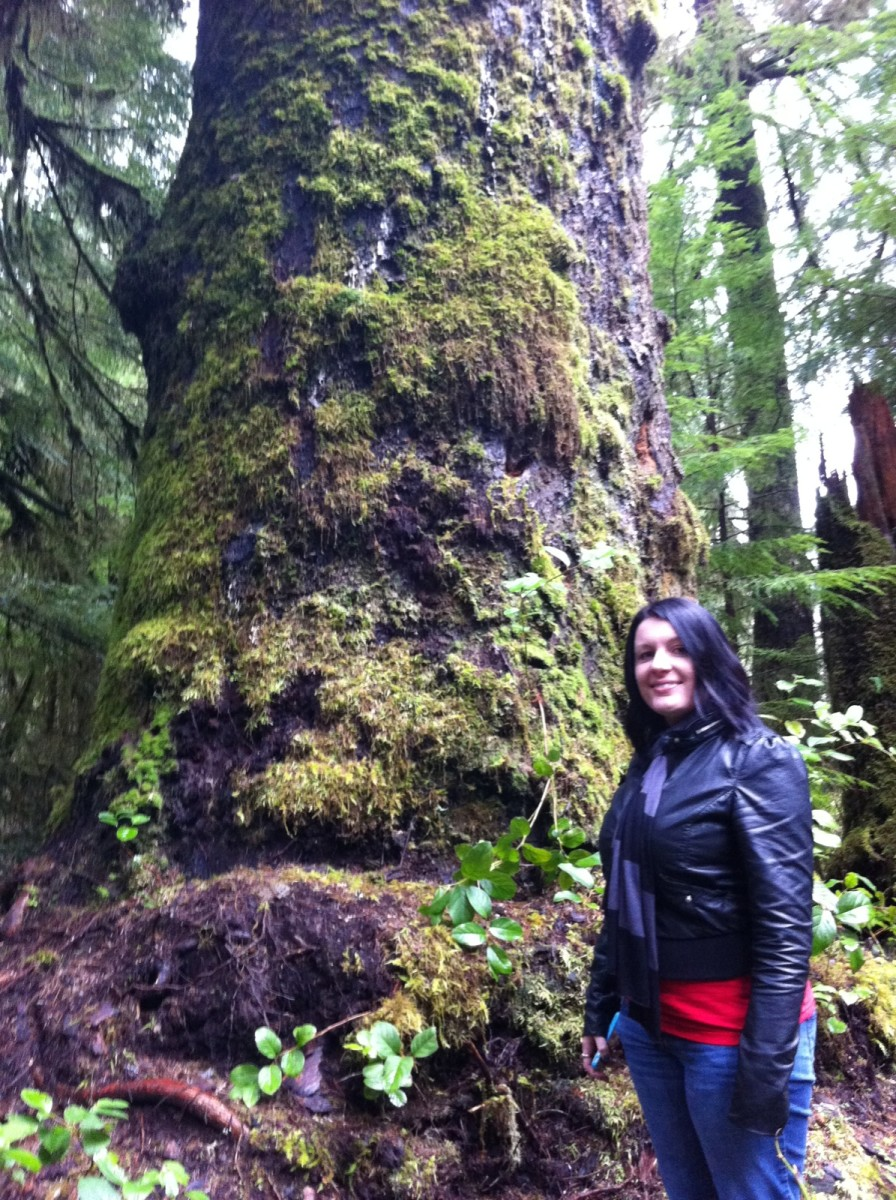 Hiking on the trail and stopping to take a photo next to a massive moss covered tree