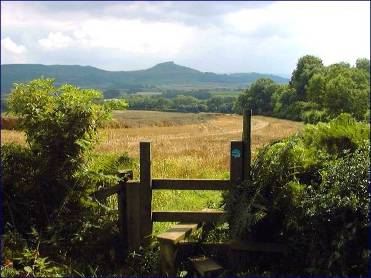 That's the stile! Looking from Upsall Moor towards Roseberry Topping
