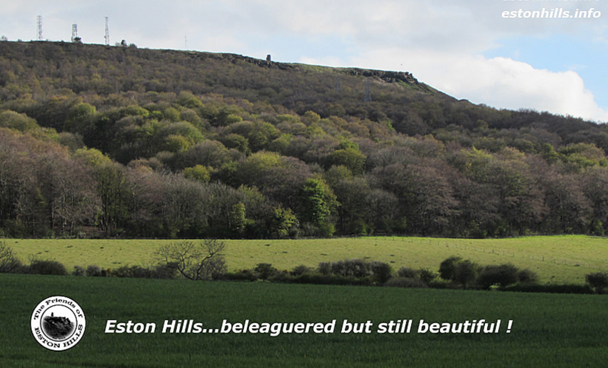 Aside from a few modern modifications, Eston Hills remain unsullied. Few signs of 99 years of ironstone mining can be seen, even New Bank Incline is almost invisible, with trees encroaching overhead and overgrown from the side
