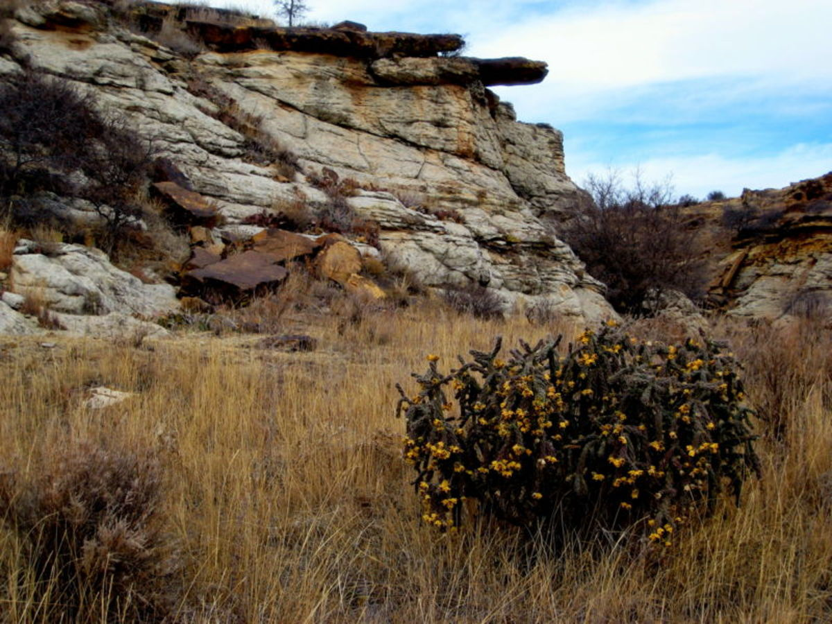 Comanche National Grassland, Colorado.