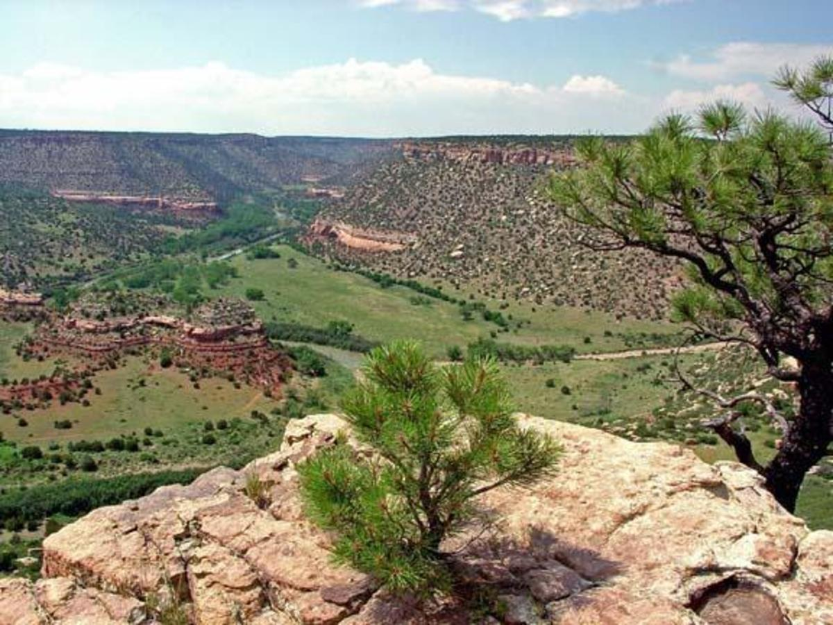Kiowa National Grassland, New Mexico.