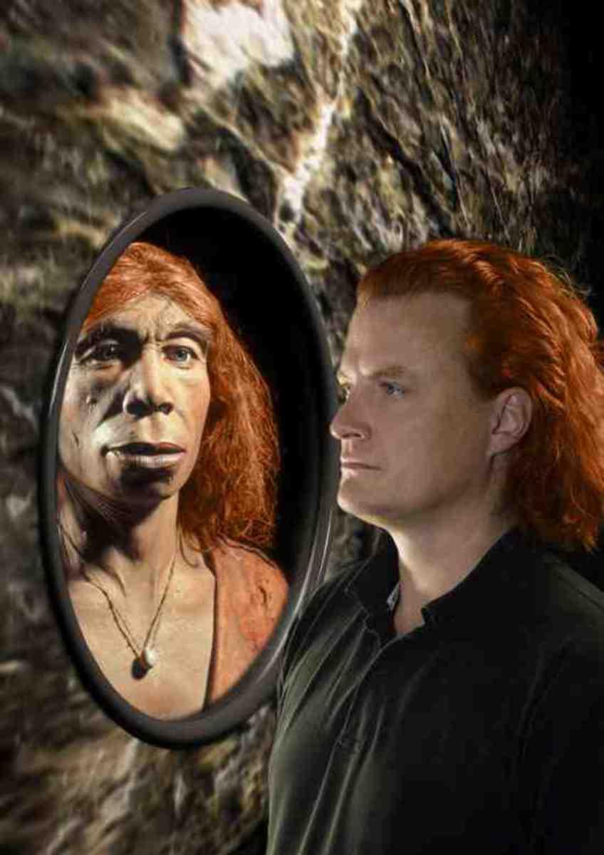 Neanderthal V Modern Man