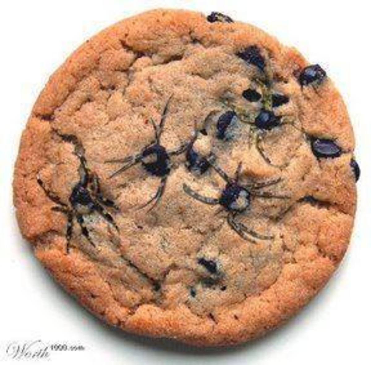 While cookies are still warm use a toothpick to drag out the spiders legs from the melted chocolate chips. Guaranteed to scare a few kids with these cookies!
