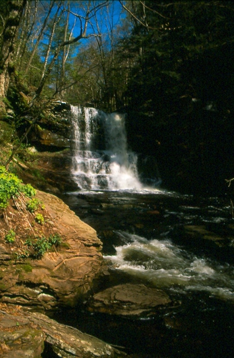 Ricketts Glen State Park, Pennsylvania.