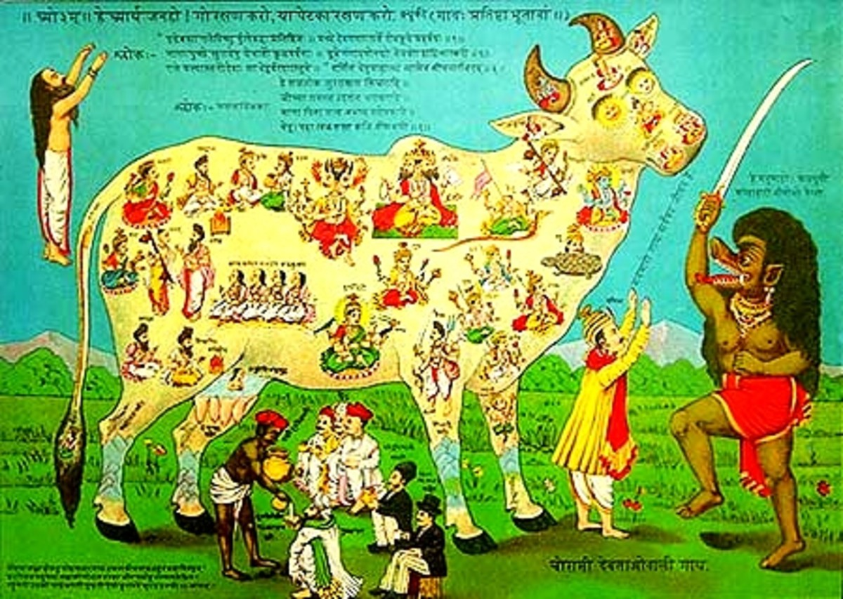 Cow is Not Holy in Jainism and Buddhism