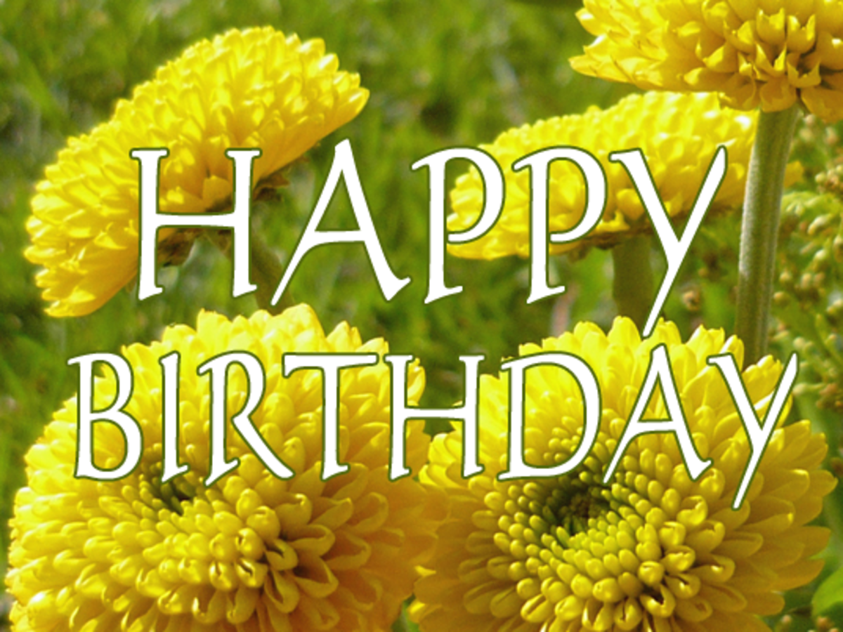 Happy birthday yellow spring flowers.