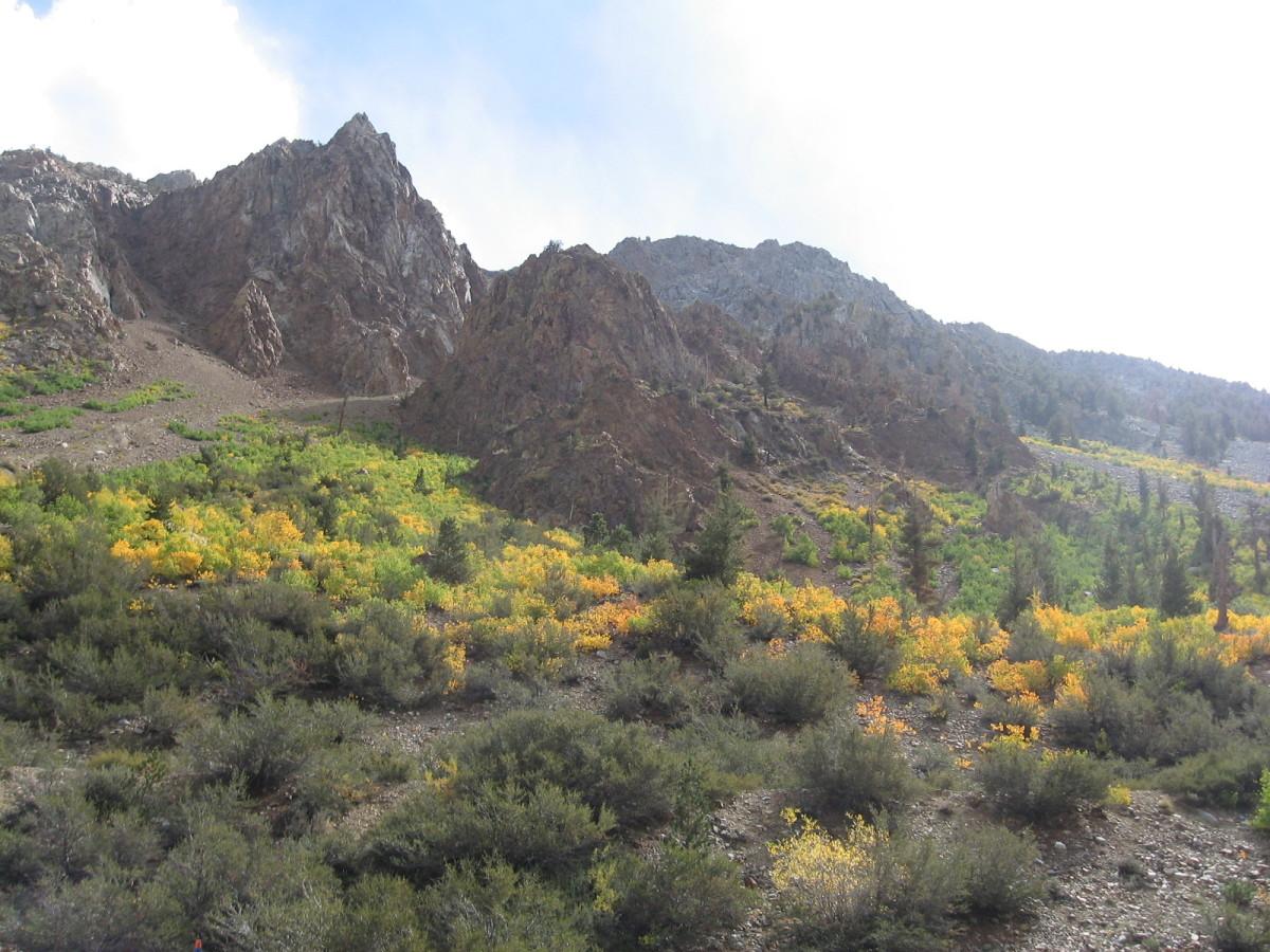 The Changing Sierra Seasons