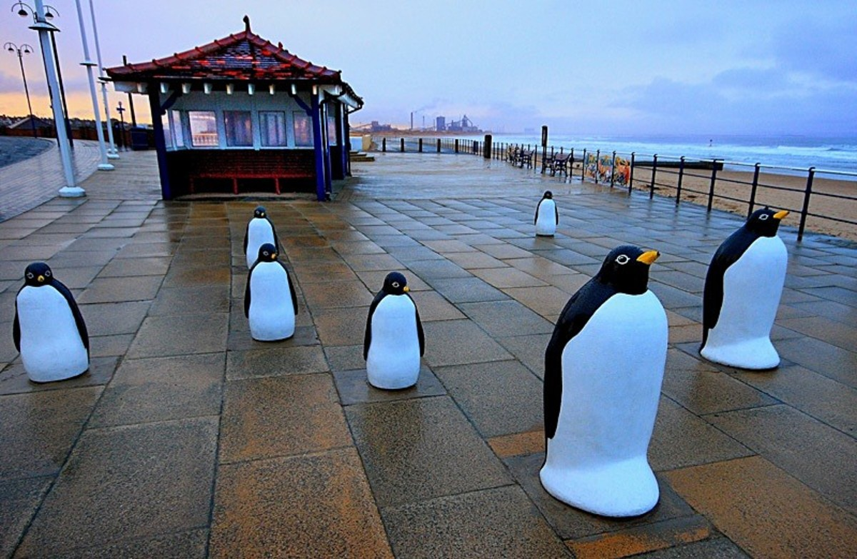 Things have moved on apace at Redcar. These visitors have found the place to their taste - just joking. This is the Penguin Parade on the Esplanade, a light-hearted addition to the sea-front