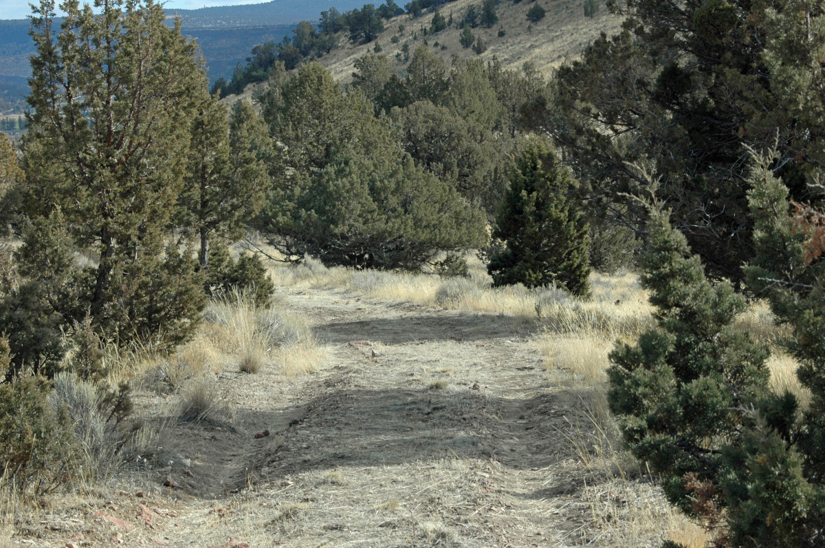 Though some of the trail is wide and easy