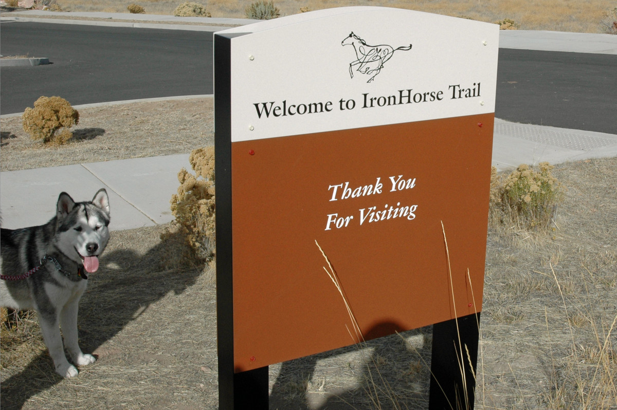 photo-tour-of-barnes-butte-ironhorse-trail-prineville-oregon