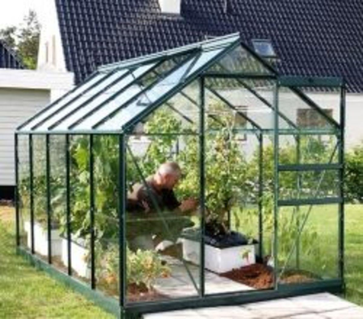 Vitavia Venus Greenhouse