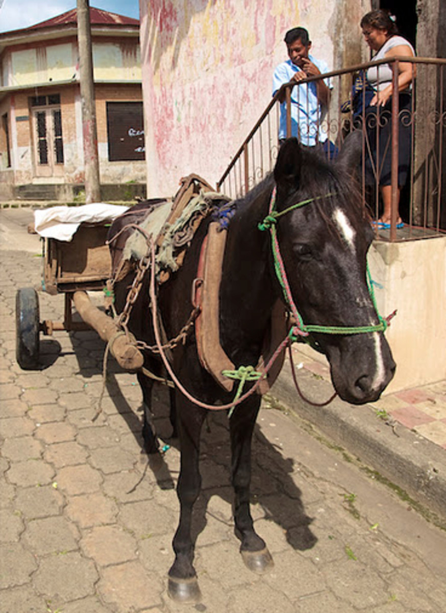 Horse drawn cart delivering vegetables in Diriamba, Nicaragua