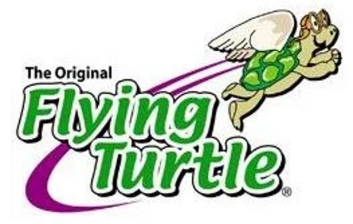 Flying Turtles:  The Best Toys Ever?