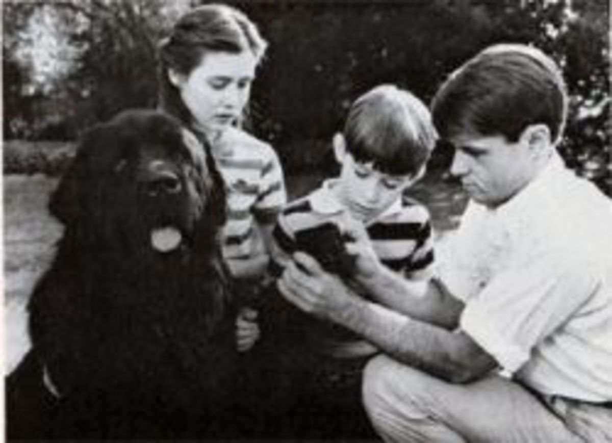 In this scene, Bobby's children (played by Shannon Douherty, left and Chris Herbert) are playing with Brumis (Buster) when he gets a sticker in his paw. They call for their father (Brad davies), very concerned, and he removes it. This photo was publi