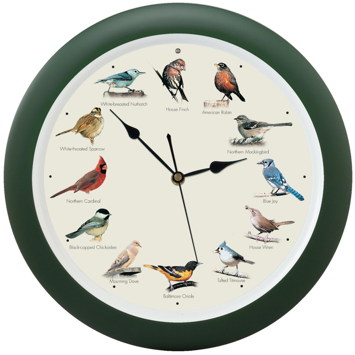 This is the clock that brings the beauty of nature into our home, with twelve authentic bird songs.