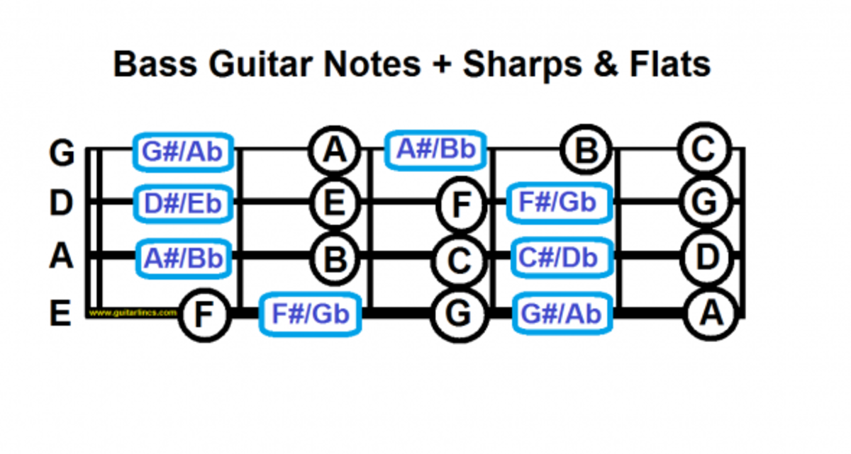 bass guitar notes including sharps and flats