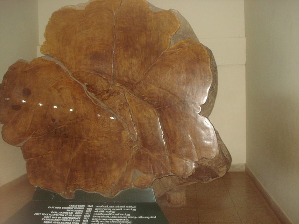 teak-wood-furniture-the-solid-wood-furniture